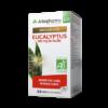 eucalyptus-52603-45_0