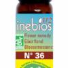 fleurs-de-bach-folle-avoine-10ml-inebios-wild-oat